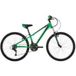 Image: RALEIGH ELIMINATOR 24 INCH BOYS 2019 GREEN