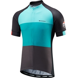 Image: MADISON SPORTIVE HALF-ZIP SHORT SLEEVE JERSEY MENS