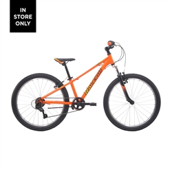 Image: RALEIGH ELIMINATOR 24 2021 ORANGE