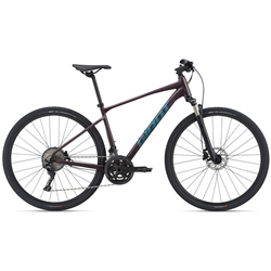 Image: GIANT ROAM 0 DISC 2021 ROSEWOOD MEDIUM