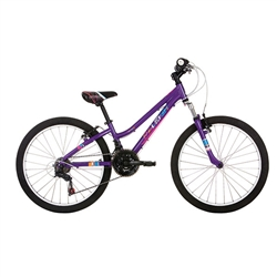 Image: RALEIGH FREEDOM 24 INCH GIRLS 2020 PURPLE